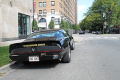 Perched (Flint Foto Factory) Tags: chicago illinois urban city autumn fall september 2018 north edgewater granville kenmore intersection sheridan 1979 1980 1981 pontiac firebird transam black gold graphics poncho generalmotors gm fbody platform pony muscle car ttops classic american sports sporty coupe rear spoiler