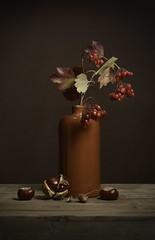 Autumn still (.MARTINE.) Tags: martine nikond800 nikonsb910speedlight still stilleven autumn herfst chestnuts kastanjes besjes berry strobist flitser studio