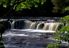 Aysgarth (Dave Snowdon (Wipeout Dave)) Tags: canoneos80d davidsnowdonphotography waterfall aysgarth longexposure northyorkshire yorkshiredales yorkshiredalesnationalpark riverure landscape
