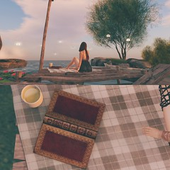 •Reading+Tea=Relaxation• (lunakittiee.artsl) Tags: secondlife life photography reading tea lake water blanket boho secondlifenature light lights collage myedit