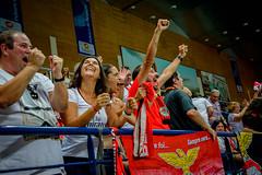 _FPV3577 (américodias) Tags: viana365 benfica sporting voleibol fpv