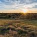 Richmond Battlefield: Churchill's Draw