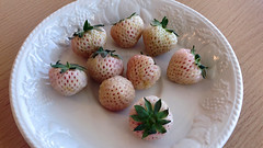 Theale, Berkshire - England (Mic V.) Tags: pineberries pineberry white strawberry pineapple fruit berry plate fraise blanche fresa blanca