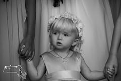 M&S rd 1-72 (alanschererphotographer) Tags: bride flowergirl family child girl wedding familyphotos