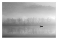|_| (paolo paccagnella) Tags: phpph© lake veneto territorio italy ambiente acqua activity ass aquae bn bw blackandwhite biancoenero nebbia fog flickr foto boat boys fisherman mirror monochrome monti