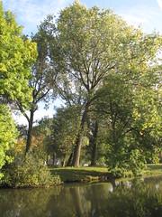 IMG_3355 (kassandrus) Tags: limespad hiking netherlands nederland law16 wandelen