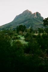 Simonsberg, Pniel, South Africa (Semjaja) Tags: landscape mountain film filmlives filmsnotdead filmphotography ishootfilm shootfilm shotonfilm onfilm analogue antiquecamera yashica yashicafx7 ml4275mm fujifilm fujifilmc200 pniel simonsberg paarl