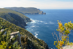 20181013-12-Three Capes Track day 2 - Sea Cliffs from Arthurs Peak (Roger T Wong) Tags: 2018 arthurspeak australia np nationalpark rogertwong sel24105g sony24105 sonya7iii sonyalpha7iii sonyfe24105mmf4goss sonyilce7m3 tasmannationalpark tasmanpeninsula tasmania threecapestrack bushwalk hike outdoors tramp trek walk
