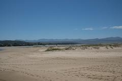 DSC04411.jpg (taarhaug) Tags: gardenroute mosselbay plettenbergbay westerncape southafrica za
