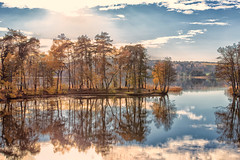 reflectios in autumn (anderswetterstam) Tags: fall lake landscape nature seasons water autumn trees golden yellow reflection sky clouds tranquility
