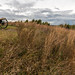 Perryville Battlefield, Parson's Ridge
