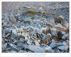 Alpine Rock Garden (G Dan Mitchell) Tags: sierra nevada alpine zone talus scree rocks boulders rocky outcropping shattered rugged glacial eastern johnmuir wilderness nature landscape gem lakes california usa north america
