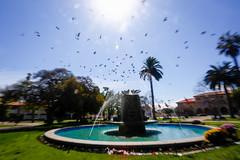 Plaza de Armas (Lukas Osses Codelia) Tags: laserena coquimbo faro igelisa