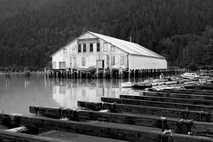 The Cannery (joeinpenticton Thank you 2.3 Million views) Tags: rain forest dock wharf pier bella coola road trip british columbia bc chilcotin highway fish fishing great bear rainforest hill caraboo reflection reflections sailboat sail boat cannery dilapidated museum packers net loft storage valley black white bw bcpackerscannery greatbearrainforest chilcotinbellacoolahighway thehill thebighill blackandwhite blackwhite bandw central coast monochrome