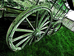 So Lent Green (Steve Taylor (Photography)) Tags: cart cartwheel digitalart fence green monocolor monocolour wooden timber wood newzealand nz southisland canterbury christchurch grass texture winter