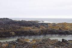 DSC_2622 ~ Devil's Churn OR (stephanie.ovdiyenko) Tags: capeperpetua oregon oregoncoast pacificcoast coast pacificocean rockycoast shoreline coastline rocks