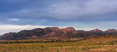Mount Alec Range - Flinders Ranges, SA (Trace Connolly Photography) Tags: natur natura natural nature naturaleza naturephotography colour color colourful outdoor outdoors outside eos canon sunlight exposure flickr landscape earth environment environmental environmentalphotography sunset sunrise contrast red green yellow blue black white scene scenery cloud clouds sky scenic weather holiday view country countryside mountalec flindersranges southaustralia orange purple pink mountain mountains outback golden camera