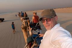 10003409.jpg (KevinAirs) Tags: camels kevinairs ocean camel travel westernaustralia ©kevinairswwwkaozcomau sand sky landscape landscapes beach australia sea jacquihawkins