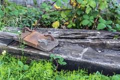 """BR"" (d0mokun) Tags: blackcountry railway southstaffsline abandoned autumn railwaychair railwaytie sleepers sunset urbandecay urbanexploration urbanlandscape urbex westmidlands tipton england unitedkingdom gb"