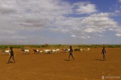 20180925 Etiopía-Turmi (27) R01 (Nikobo3) Tags: áfrica etiopía turmi etnias tribus people gentes portraits retratos culturas travel viajes nikon nikond610 d610 nikon247028 nikobo joségarcíacobo