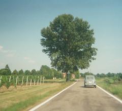 summer (giulia lago) Tags: seasons stagioni disposable usaegetta summer estate renault countryside street