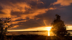 Beyond the horizon (Tasmanian58) Tags: sunrise boat ship river horizon mood morning orleans island quebec canada sony a7ii loxia loxia35 35mm 235mm zeiss landscape