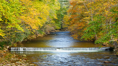 Water Color (Philippe Guichard) Tags: foliage color fall autumn catskill