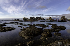 Point of the Arches 2300 (All h2o) Tags: point arches shi beach rock stack seastack coast ocean sea seaside pacific northwest olympic national park peninsula landscape water sky