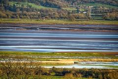 The fishing grounds of my Father and Grandfather (johnsti777) Tags: severn gloucestershire lavenetfishing tidal estury fishing sigma 120400 os sigma120400oshsmf4556 selectiveconceptualdof salmon salmonfishing