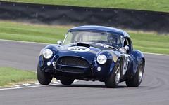 C is for Cobra #3 (MJ Harbey) Tags: car racetrack goodwood revival goodwoodrevival goodwoodrevival2018 westsussex cobra accobra 1964 rac tt racttcelebration madgwickcorner gregaudi audi jarier jeanpierrejarier accobra1964 nikon d3300 nikond3300