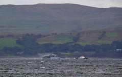 HMS Cattistock & Smit Yare (Zak355) Tags: rothesay isleofbute bute scotland royalnavy naval ship boat vessel exercise minesweeper minehunter jets smityare hmsgrimsby hmscattistock riverclyde