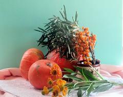Осенние краски (lvv1937) Tags: осень облепиха цветы тыква натюрморт explore stilllife мыизяфа