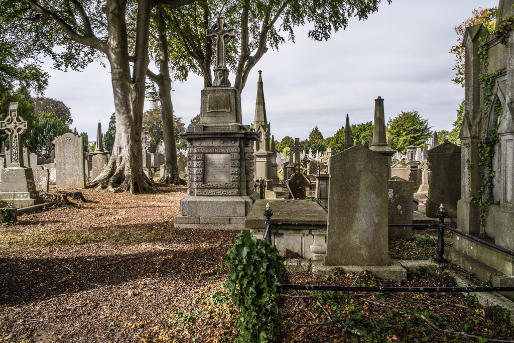 SEPTEMBER 2018 VISIT TO GLASNEVIN CEMETERY [ I USED A BATIS 25mm LENS AND I EXPERIMENTED WITH CAPTURE ONE]-144843