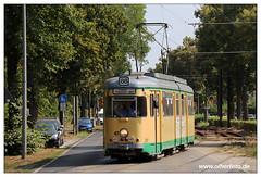 Tram SRS - 2018-29 (olherfoto) Tags: tram tramway strasenbahn villamos srs düwag schöneiche rüdersdorf canoneosm50