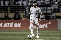 Gustavo Henrique (Santos Futebol Clube) Tags: santosfc campeonatobrasileiro2018 pacaembu vasco elencoprofissional