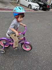 First Bike Ride (earthdog) Tags: 2018 bike bicycle helmet googlepixel pixel scooter androidapp moblog cameraphone