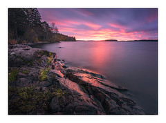 Fire in the sky (Andreas Larzon Photography) Tags: boulders cliffs cloudy coast fujinonxf1024mmf4rois forrest grass görväln järfälla kust kustlinje lake landscape landskap longexposure magentasky mirrorwater nature naturereserve naturreservat nikond7200 ocean oragnesky overcast pinetree rock sea seascape shoreline sky smoothwater sten stockholmslän sunset sverige sweden trees water seaside