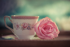 Pretty in pink (Ro Cafe) Tags: nikkor105mmf28 nikond600 rose stilllife bloom delicate flower pink romantic teacup textured pastelcolours