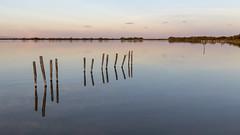 Zénitude (Xtian du Gard) Tags: xtiandugard sérénité calme zen minimaliste goldenhour camargue provence france saintesmariesdelamer pontdegau bleu blue paysage landscape waterscape 16x9