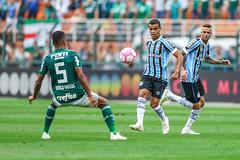 Gremio x Palmeiras (Grêmio Oficial) Tags: brasileirao campeonatobrasileiro2018 equipe esporte esportedeacao estadio futebol gremio