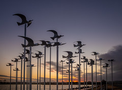 Flying into the sunset (lizcaldwell72) Tags: sculpture hawkesbay sunrise napier cloud water birds sky watchmanlake newzealand light