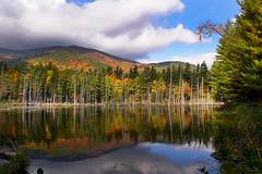 Mirror (Renata Lenartowicz) Tags: water reflection sky blue clouds trees fall autumn orange green