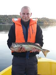 mein erster Pollack (Angelreisen Hamburg) Tags: angelreisen angelurlaub angeln norwegen südnursalzwasser sørlandet