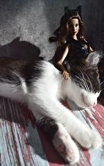 Agnes& Ellie (Myrzuk) Tags: ellie fashion royalty vamp agnes cat
