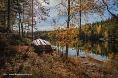 20181007004071 (koppomcolors) Tags: koppomcolors koppom boda värmland varmland sweden sverige scandinavia