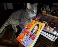 What to 📖 to read, what to read? May I suggest Painted Faces on Amazon. #rivercat #cat #feline #book #books #novel #whattoread #bookclub #mybook #bookworm #bookPaintedFaces (Jordon Papanier) Tags: rivercat cat feline book books novel whattoread bookclub mybook bookworm bookpaintedfaces