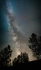 001-180811-ILCE-9-35 mm-223344__ARS3483-Pano (Staufhammer) Tags: sonya9 sonyalpha sony a9 sonylandscape sonymirrorless samyangoptics samyang samyang35mmf14 rokinon rokinon35mmf14 panorama milkyway nationalparks nationalparksservice pinnacles pinnaclesnationalpark perseids meteorshower meteor nightphotography nightscapes nightlandscapes mirrorless fullframe astrophotography night silhouettes