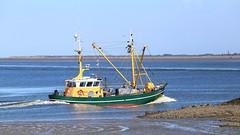 ZK17 (wjpostma) Tags: zk17 fishingvessel johannesdirk garnalenkotter kotter northsea noordzee