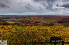 Ryedale_DSC1061 (Nick Woods Photography) Tags: landscape moors moor yorkshire northyorkshire ryedale northyorkshiremoors greenery scenery dyke vegetation horizon sky bluesky greysky cloudysky colourful colourfullandscape