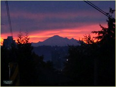 Sunrise over Mount Baker BC18j02 LG (CanadaGood) Tags: canada bc britishcolumbia newwestminster sunrise mountain mountbaker tree canadagood 2018 thisdecade color colour cameraphone morning